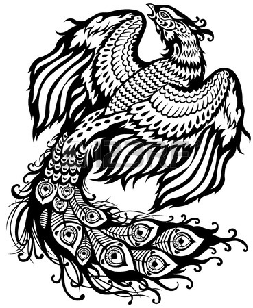 24023225-phoenix-black-and-white-illustration